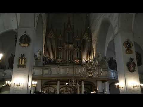 Talliner Dom - Orgelspiel
