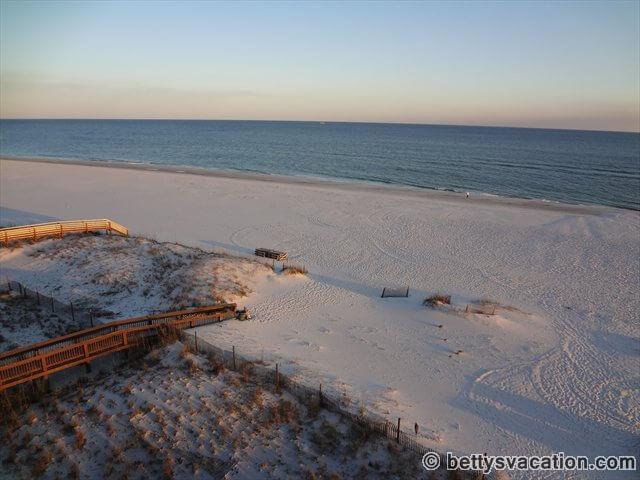Viva Florida 500 Betty 39 S Vacation