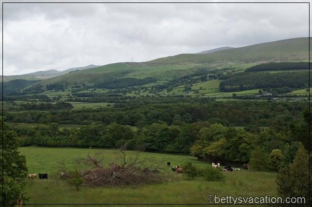 Blick vom Penrhyn Castle (2)