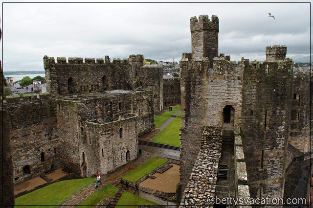 Caernarfon Castle (4)