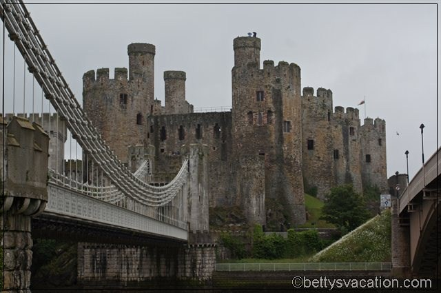 Conwy Castle (4)