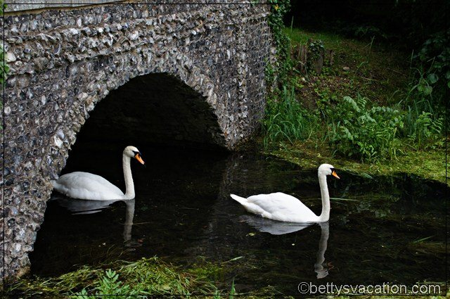 West Wycombe Park (6)