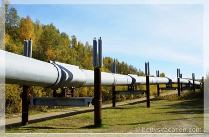Trans-Alaska Pipeline Viewpoint