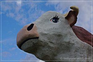 Albert the Bull 2
