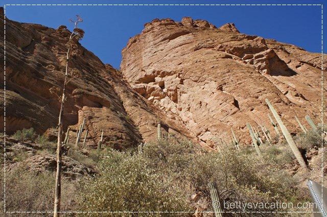 Apache Trail 9