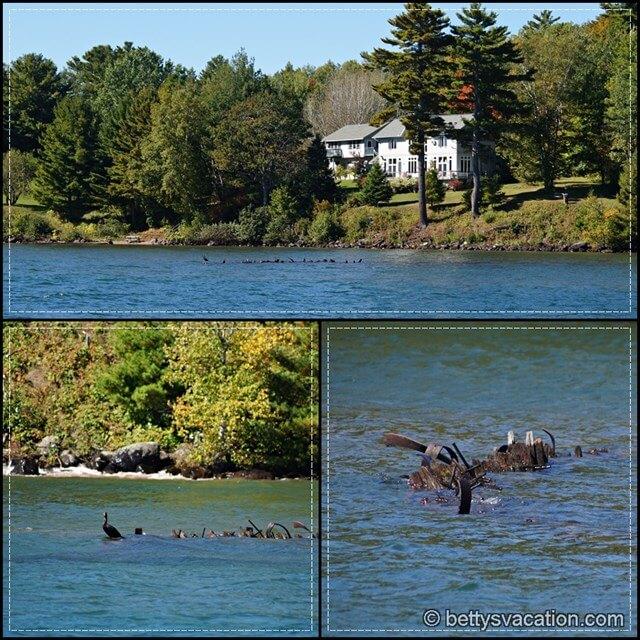 Apostle Islands Lakeshore Collage 2