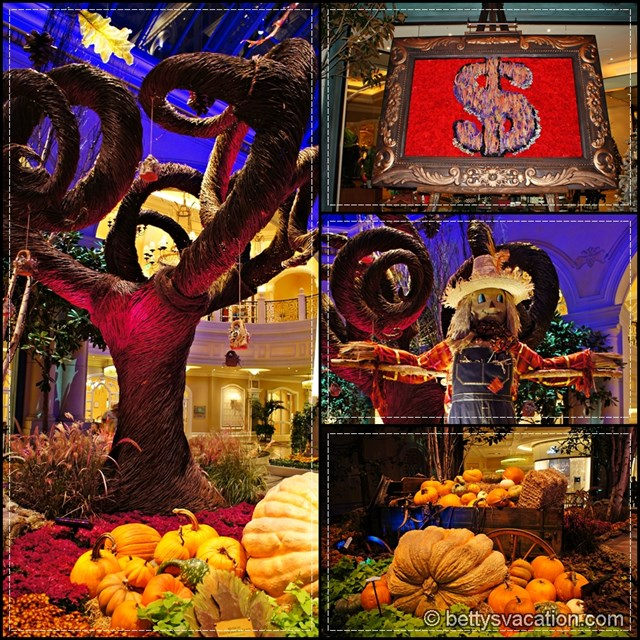 Bellagio Collage