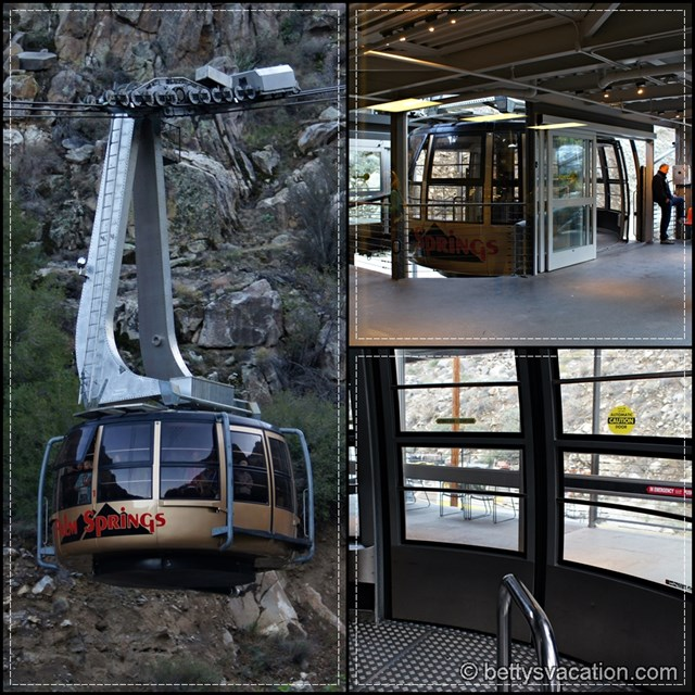 Palm Springs Tramway Collage 1