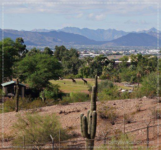 Papago Park 5