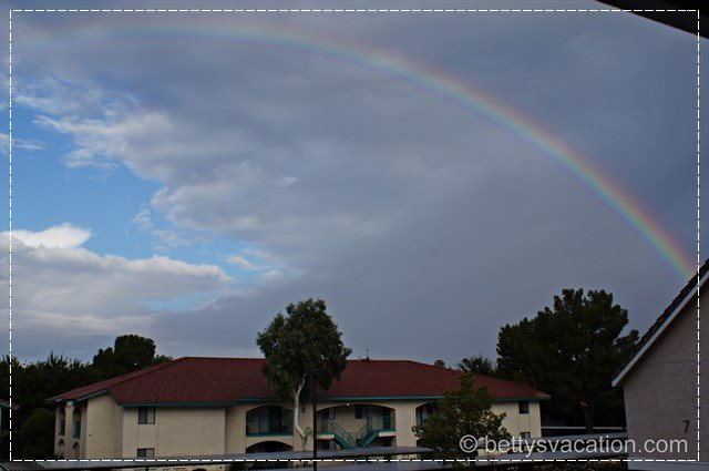 Regenbogen Phoenix