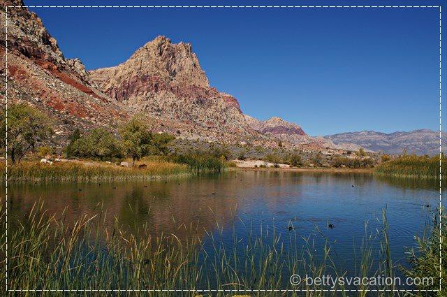 Spring Mountain Ranch SP 11