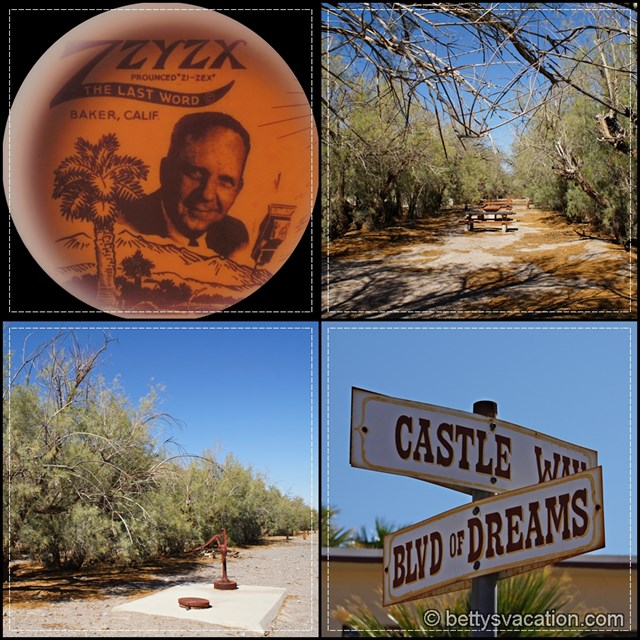 Zzyzx Collage 1