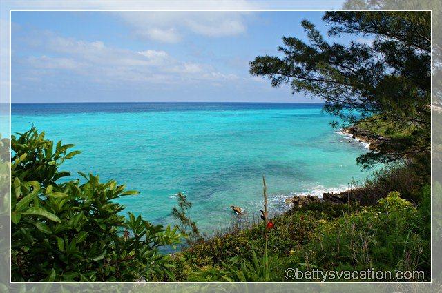 Bermuda Coast 4