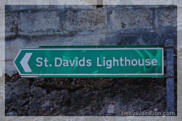 St. David 3