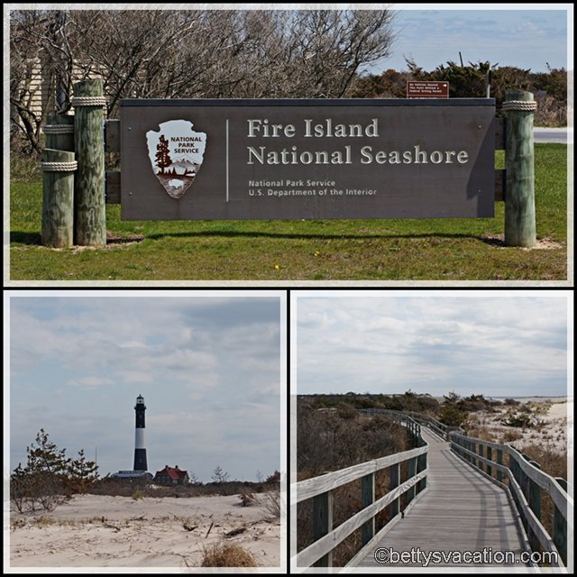Collage Fire Island