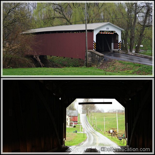 Collage Lime Valley Bridge