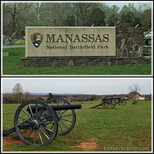 Collage Manassas Battlefield 1