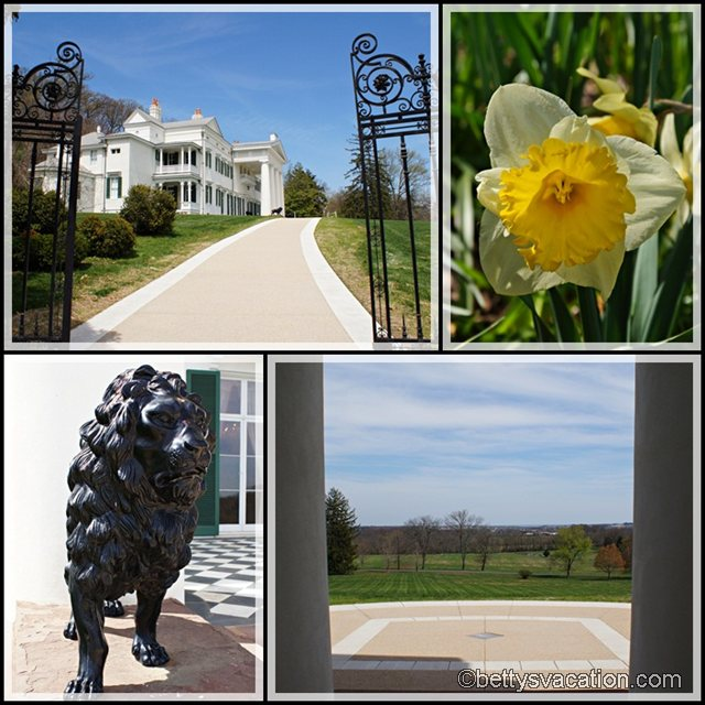 Collage Morven Park