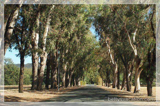 36 - King Gillette Ranch