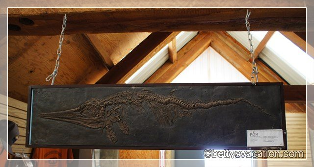 43 - Berlin - Ichthyosaur SP
