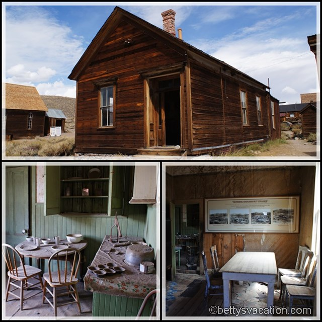 Collage Bodie 3