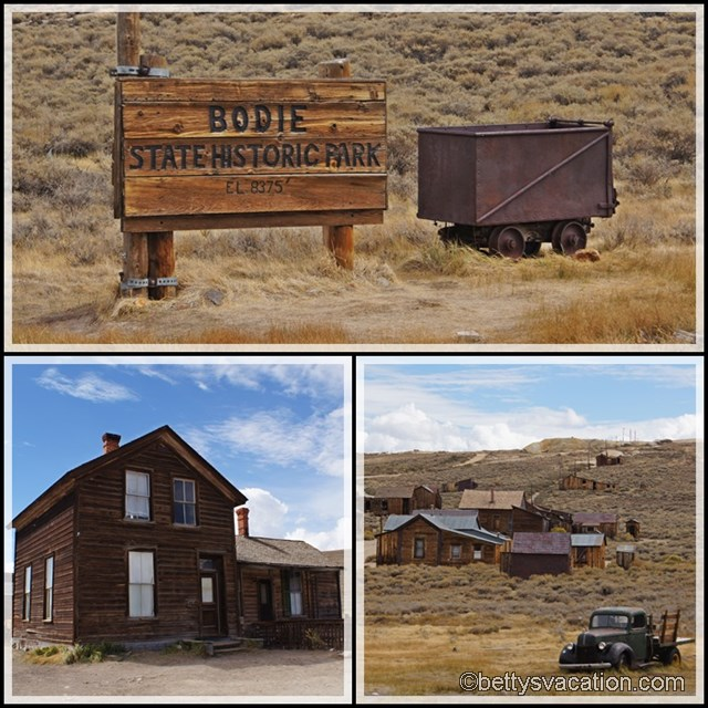 Collage Bodie 4