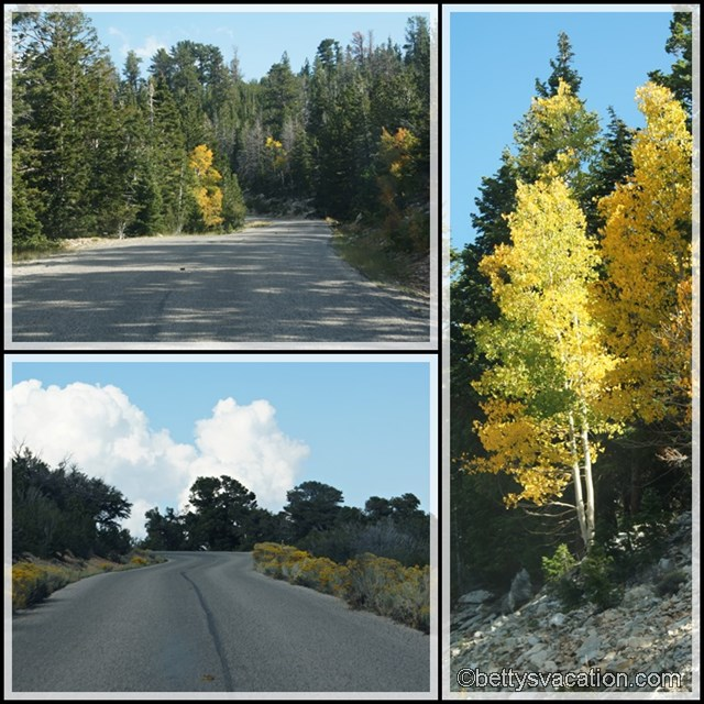 Collage Great Basin NP