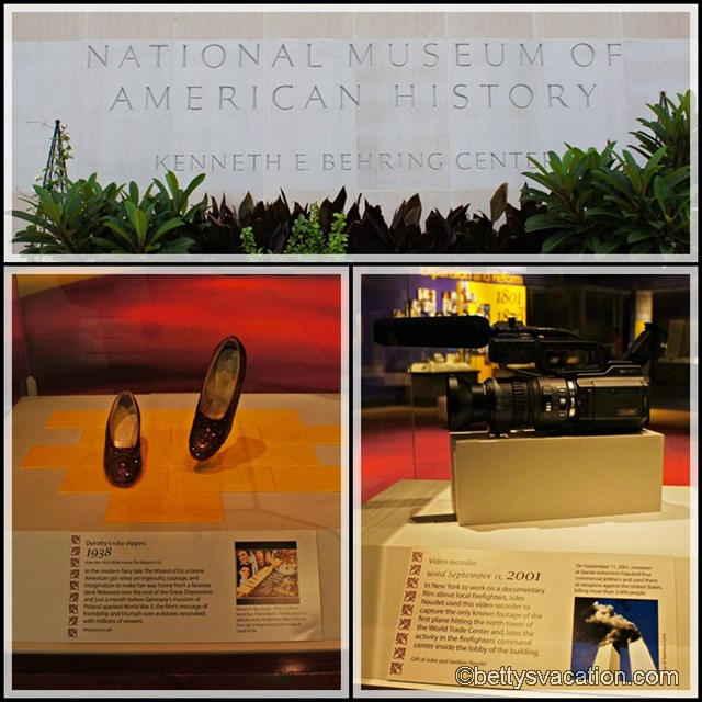 Collage Museum of National History 1