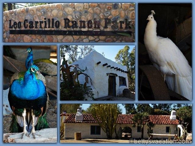 5 - Leo Carrillo Ranch Park