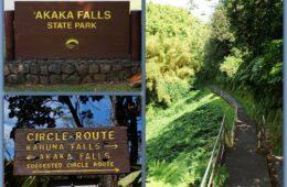 Akaka Falls State Park, Hawai'i
