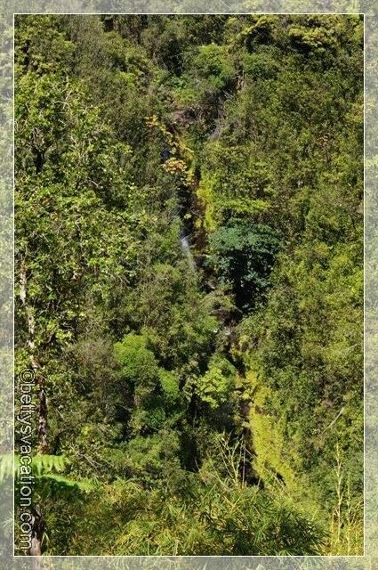 Akaka Falls SP - Kahuna Falls
