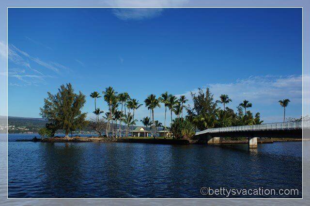 Coconut Island 5