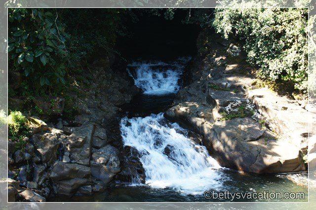Kawainui Stream 2