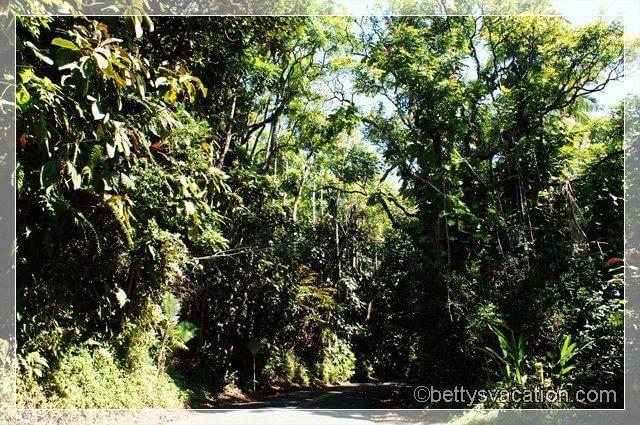Old Mamalahoa Highway