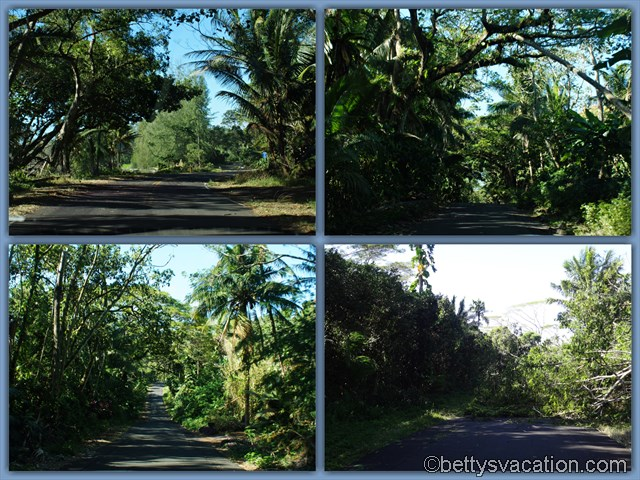 South of Pahoa Roads