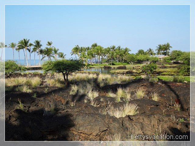 3 - Marriott Waikoloa