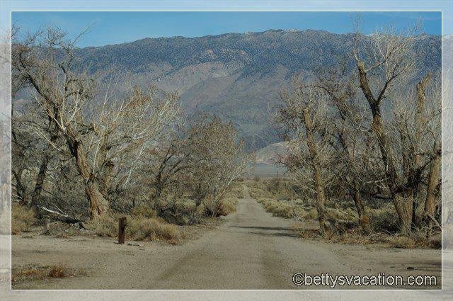 36 - Manzanar