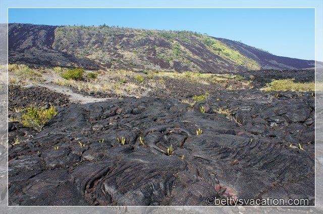 36 - Volcanoes NP