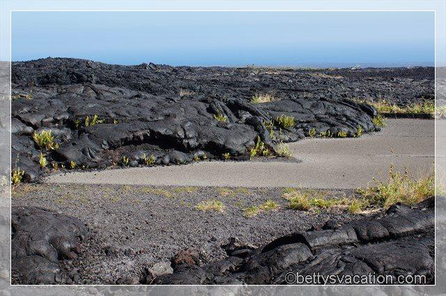 39 - Volcanoes NP