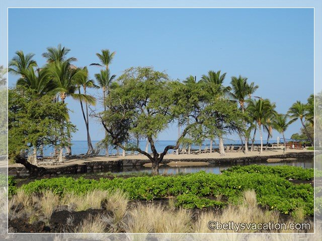 4 - Marriott Waikoloa