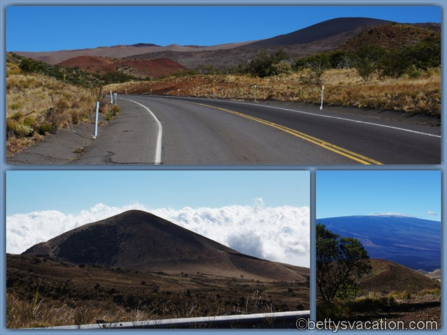 6 - Mauna Kea Road