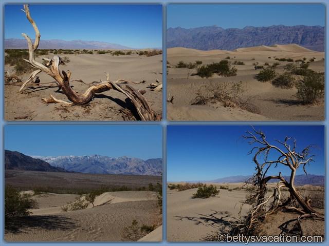 8 - Mesquite Flat Sand Dunes