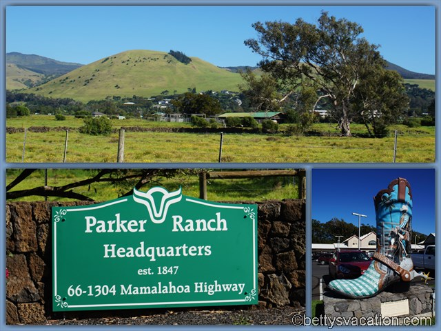 8 - Parker Ranch