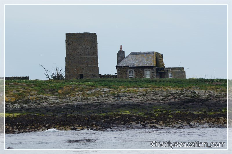 36 - Farne Islands