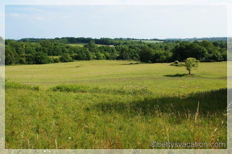 43 - 1060 Hastings Battlefield