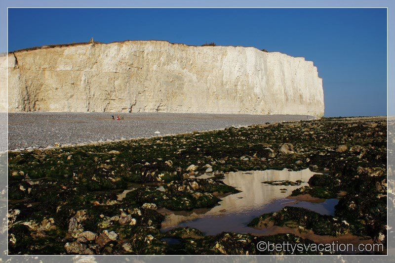 51 - Beachy Head Cliffs