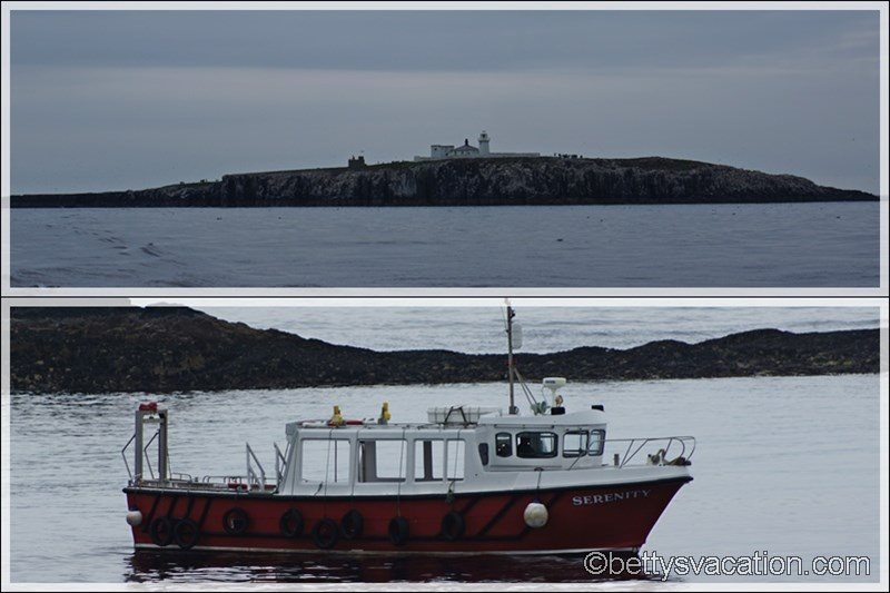 56 - Farne Islands