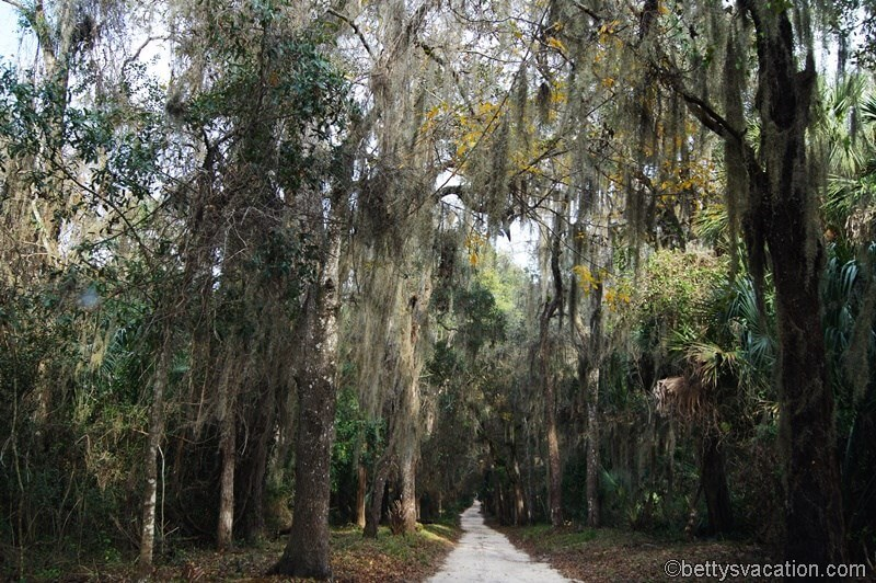 11 - Bulow Plantation SP