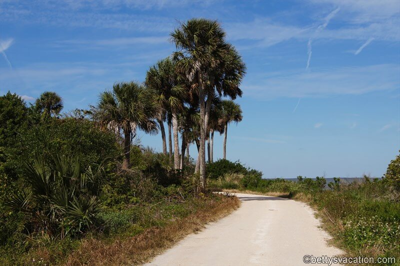 4 - Canaveral National Seashore