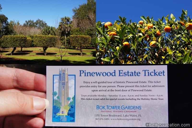 13 - Pinewood Estate